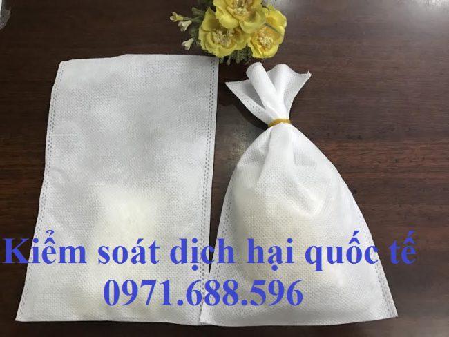 Túi vải đựng thuốc khử trùng