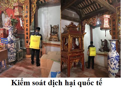 Diệt mối tại Tuyên Quang