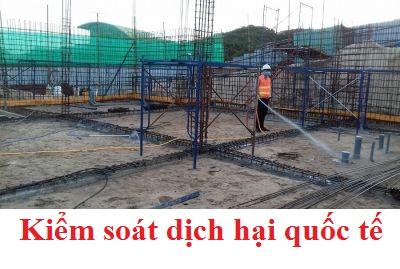 Chống mối xây dựng tại Thanh Xuân