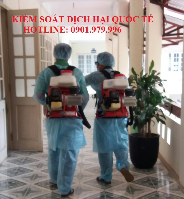 Dịch vụ phun thuốc diệt muỗi an toàn giá rẻ tại quận Tây Hồ