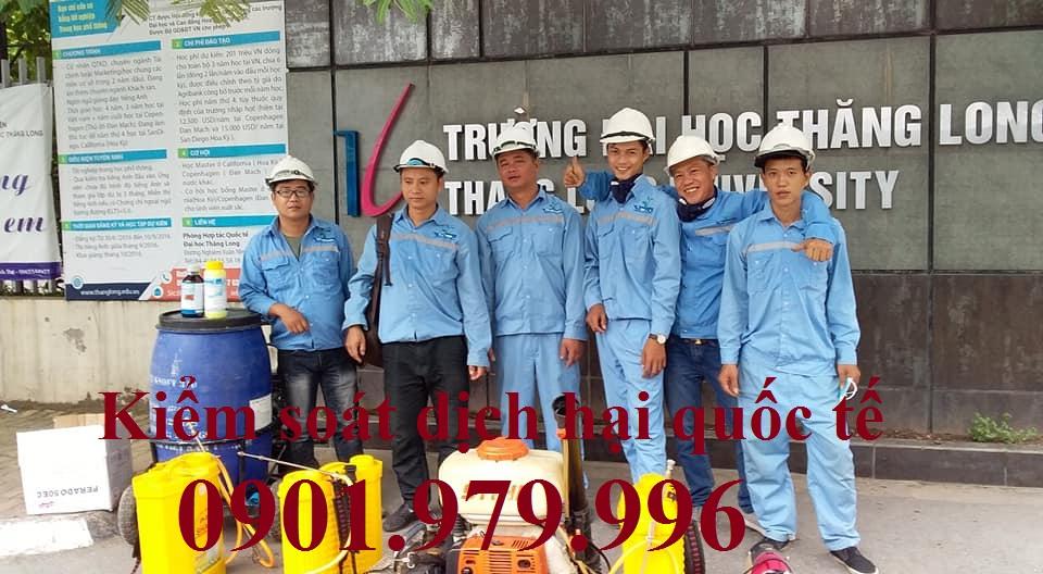 Dịch vụ phun thuốc diệt muỗi, phòng chống côn trùng tại Thanh Xuân