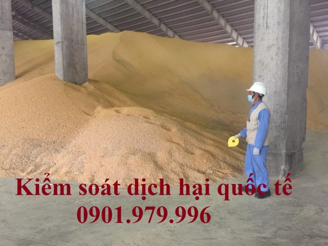 khử trùng hàng đổ rời trong kho xá