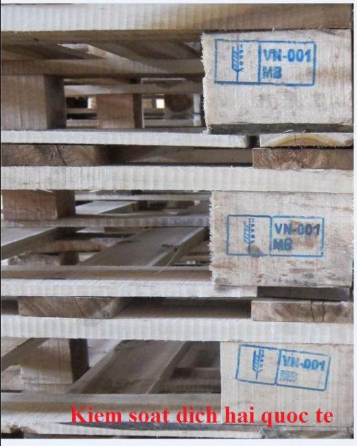 Khử trùng pallet gỗ