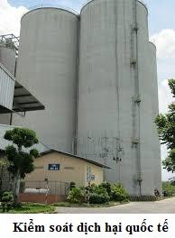 Công ty khử trùng tại Long An