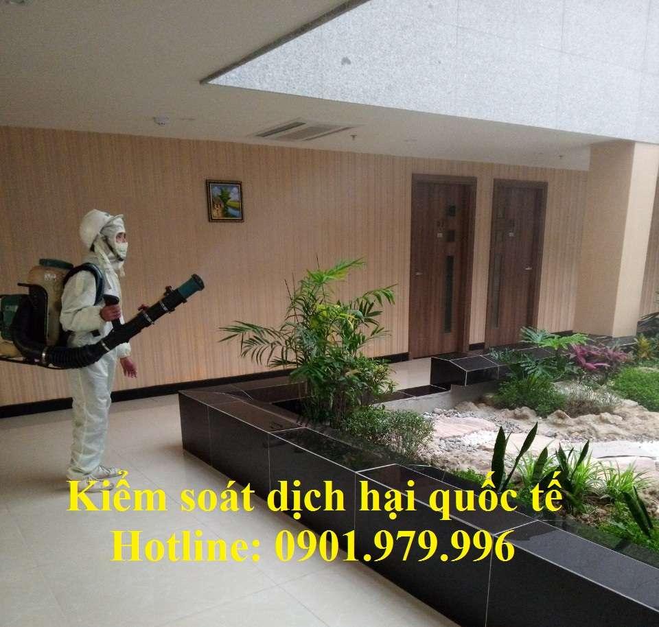Công ty phun thuốc diệt muỗi chuyên nghiệp, uy tín hàng đầu tại Hà Nội